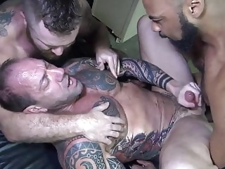 bareback big cock daddy
